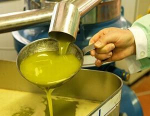 olio-extra-vergine-oliva-2
